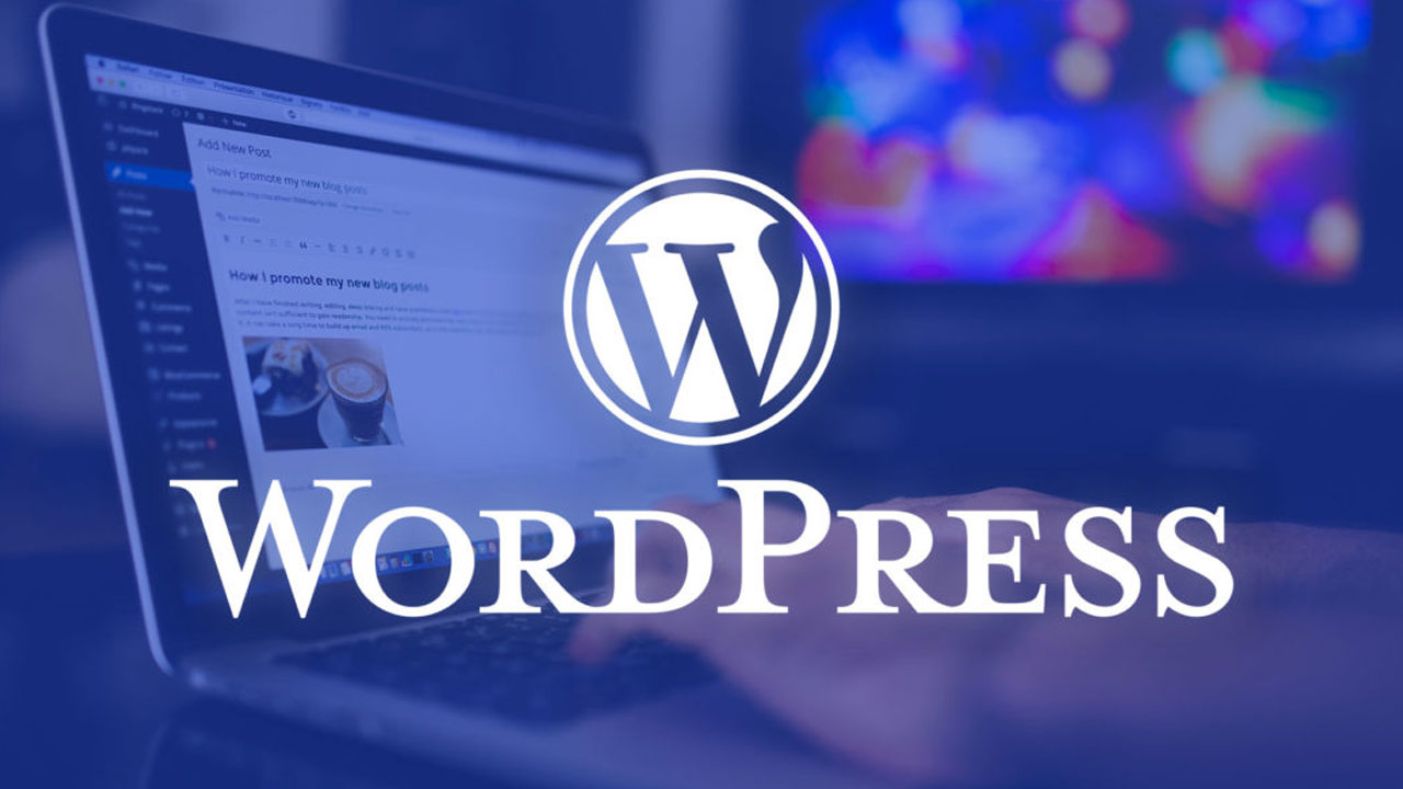 WordPress Revisions not Showing Why Does it Happen and How to Fix it